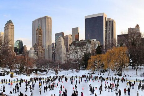Spectacular Winter in Central Park